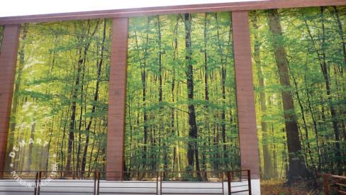 affresco-digitale-parete-esterna